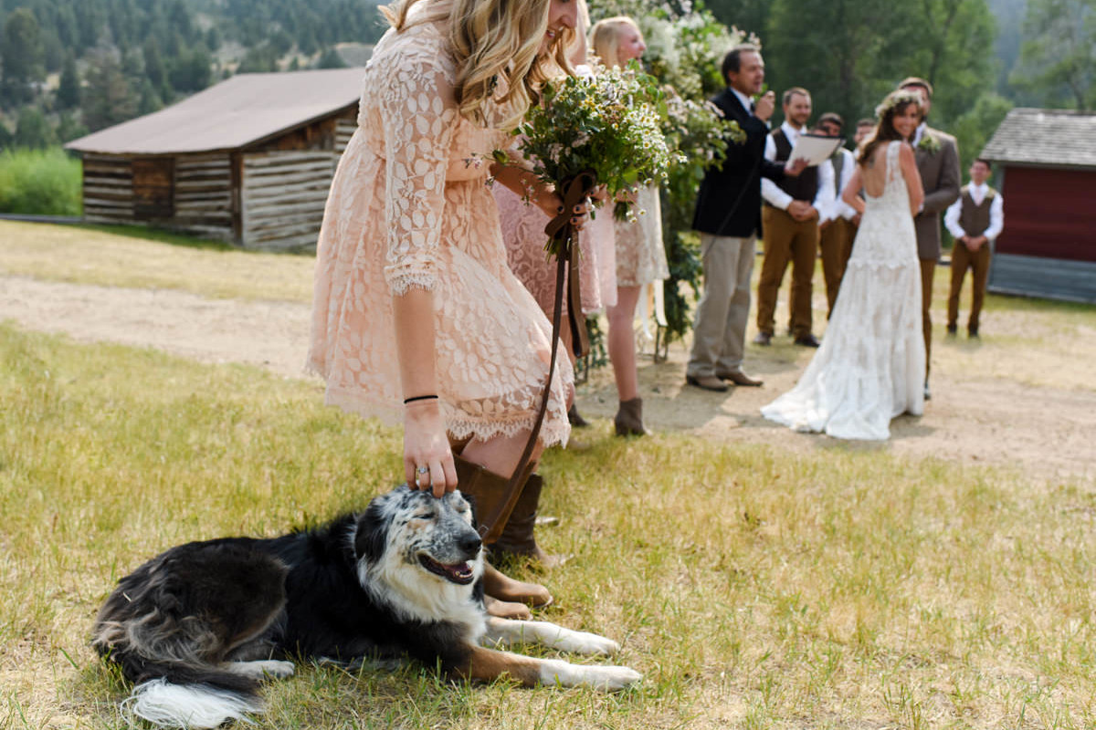 Virginia City Montana wedding day ceremony dog pet