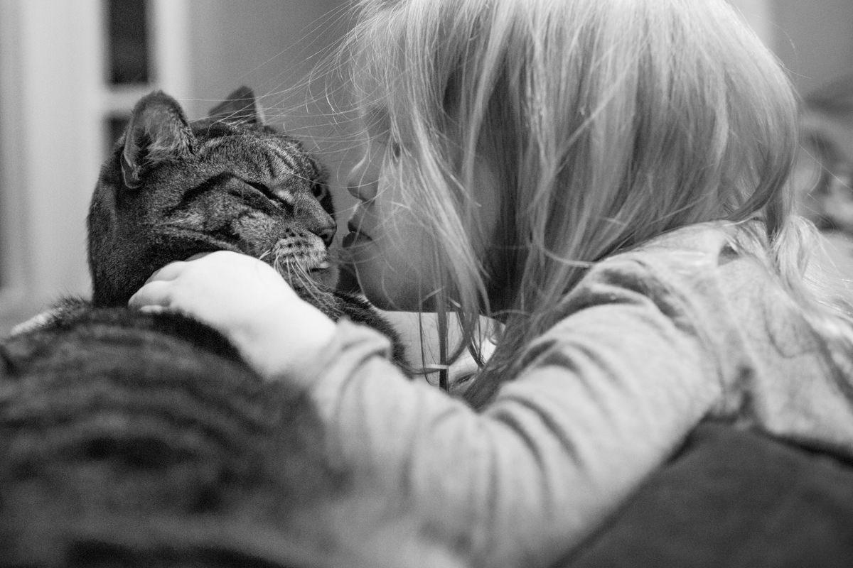 Bellingham Washington Daughter Cat Kiss