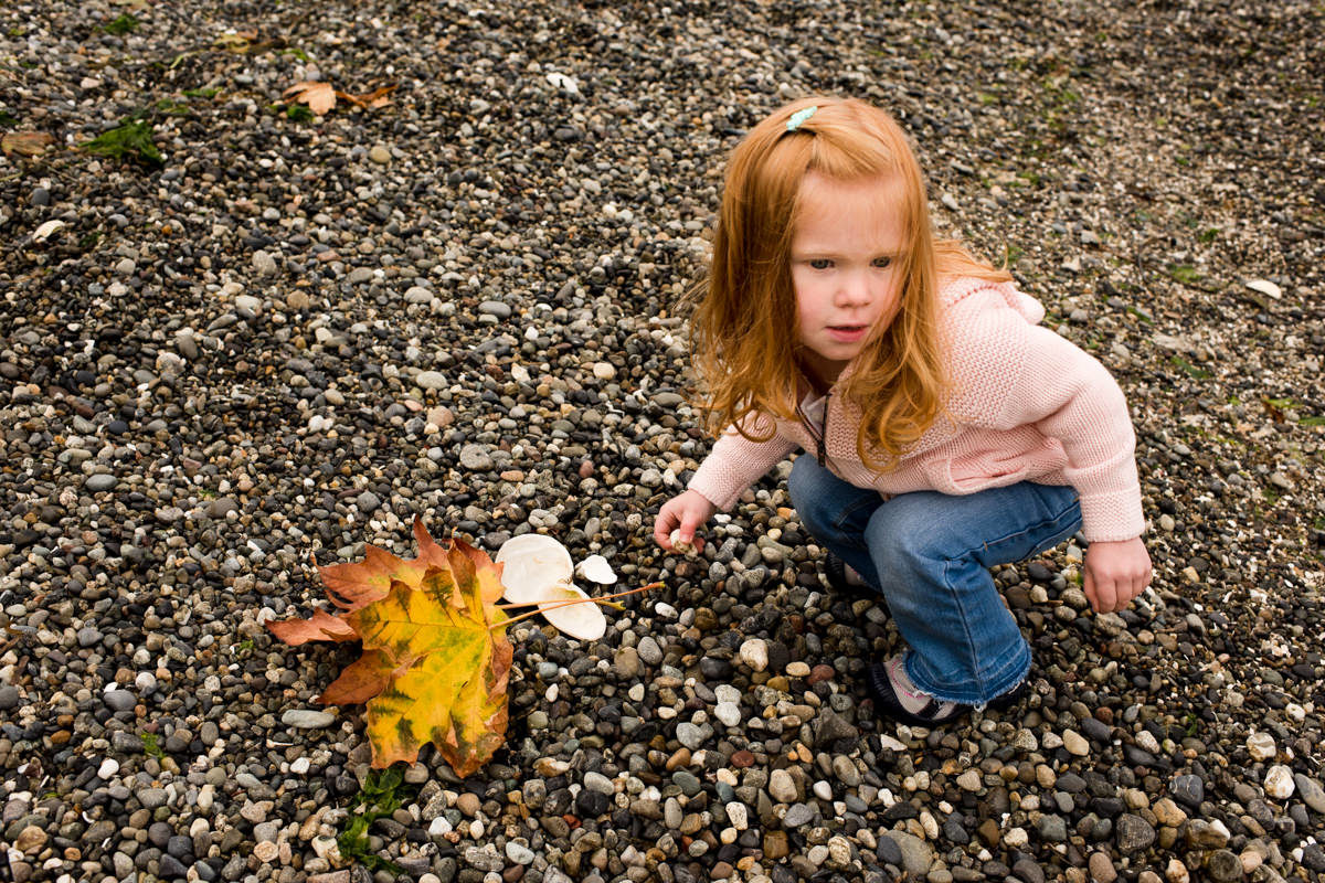 Bellingham Washington Family Portrait Beach girl