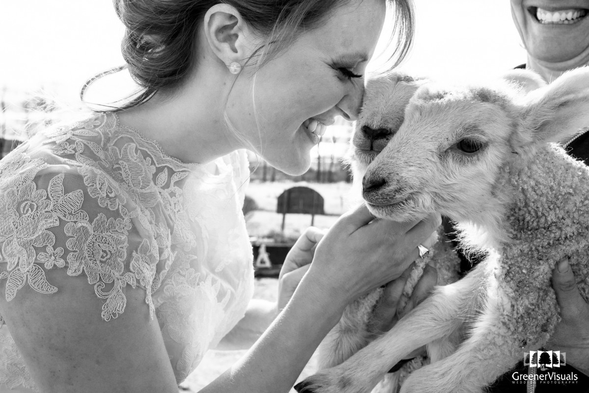 Rocky Creek Farm bride with Lambs smile portrait