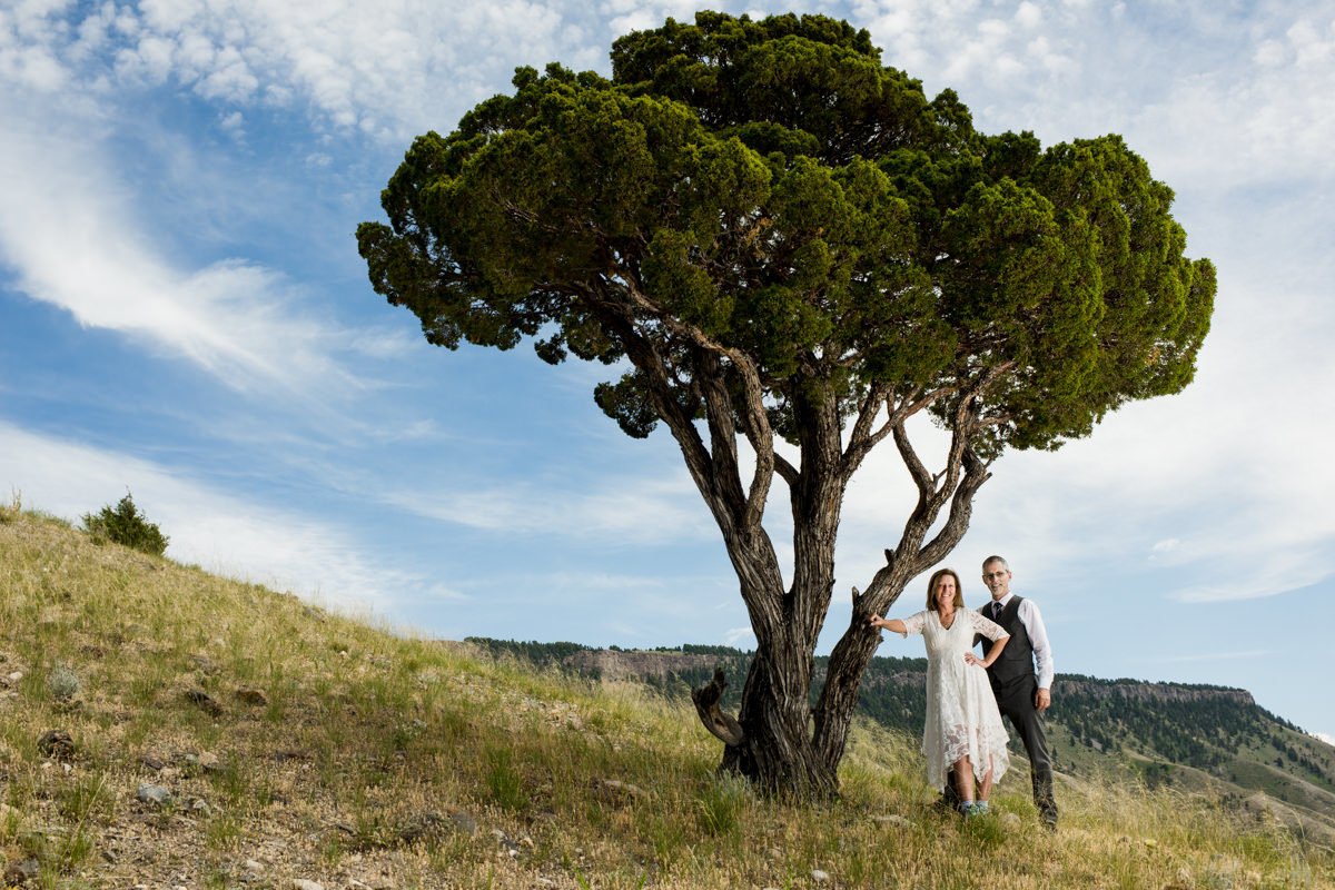 Yellowstone National Park Wedding Couple portrait tree