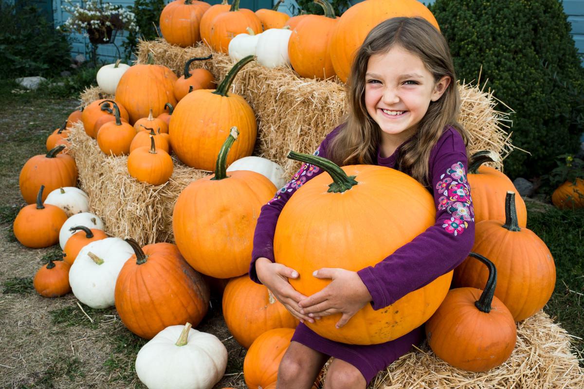Rocky Creek Farm Family Portrait Kids Pumpkins