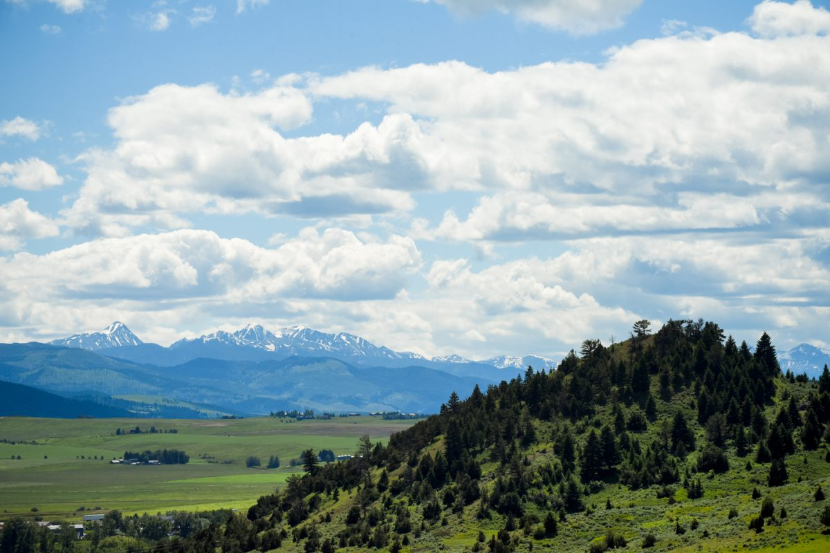 Bozeman Wedding Photographer gallatin mountain range