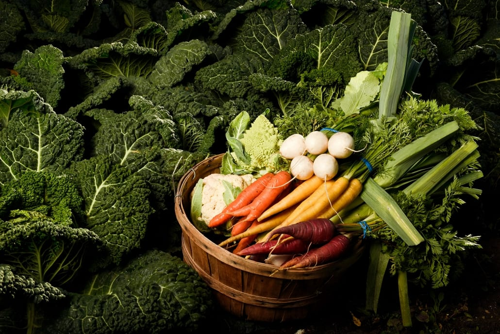 Bozeman Portrait Photography Gallatin Valley Botanical Farm veggie baskets