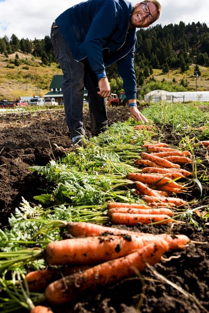 Bozeman Family Photography Gallatin Valley Botanical Farm Carrots