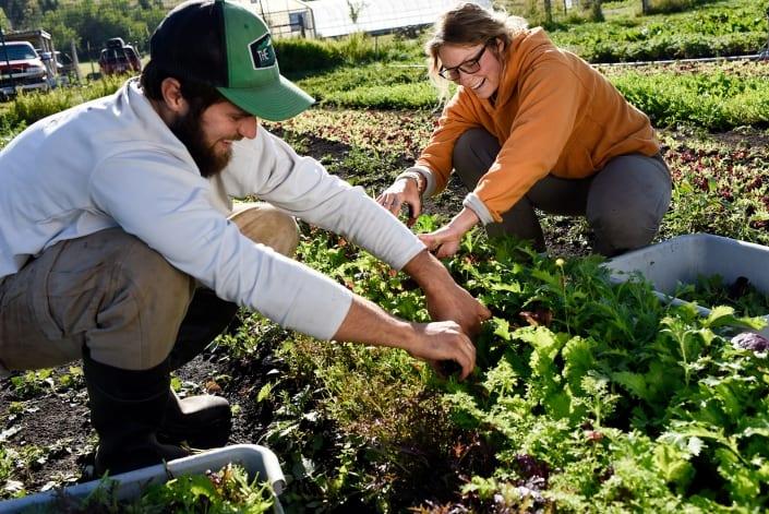 Bozeman Portrait Photography Gallatin Valley Botanical Farm Harvest