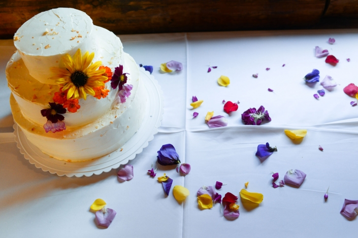 Montana Wedding Photographer Springhill Pavilion wedding cake