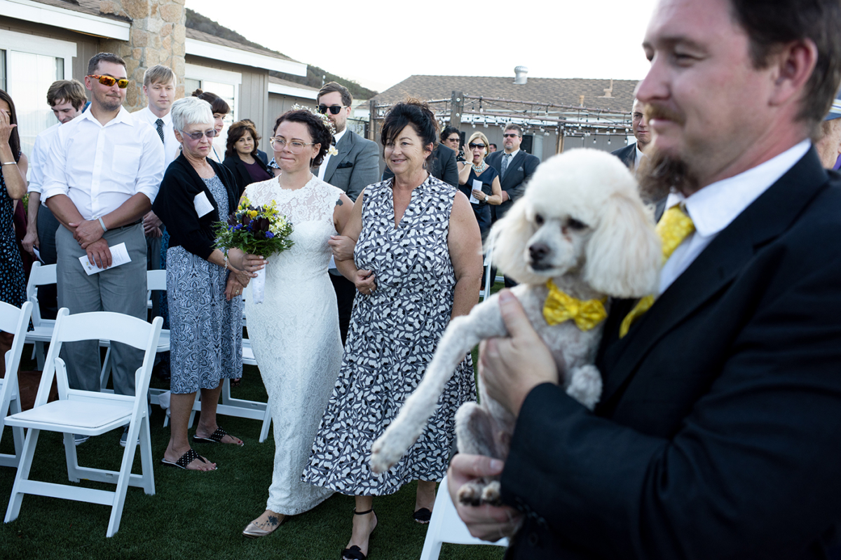Destination_Wedding_Photographer_California_poodle