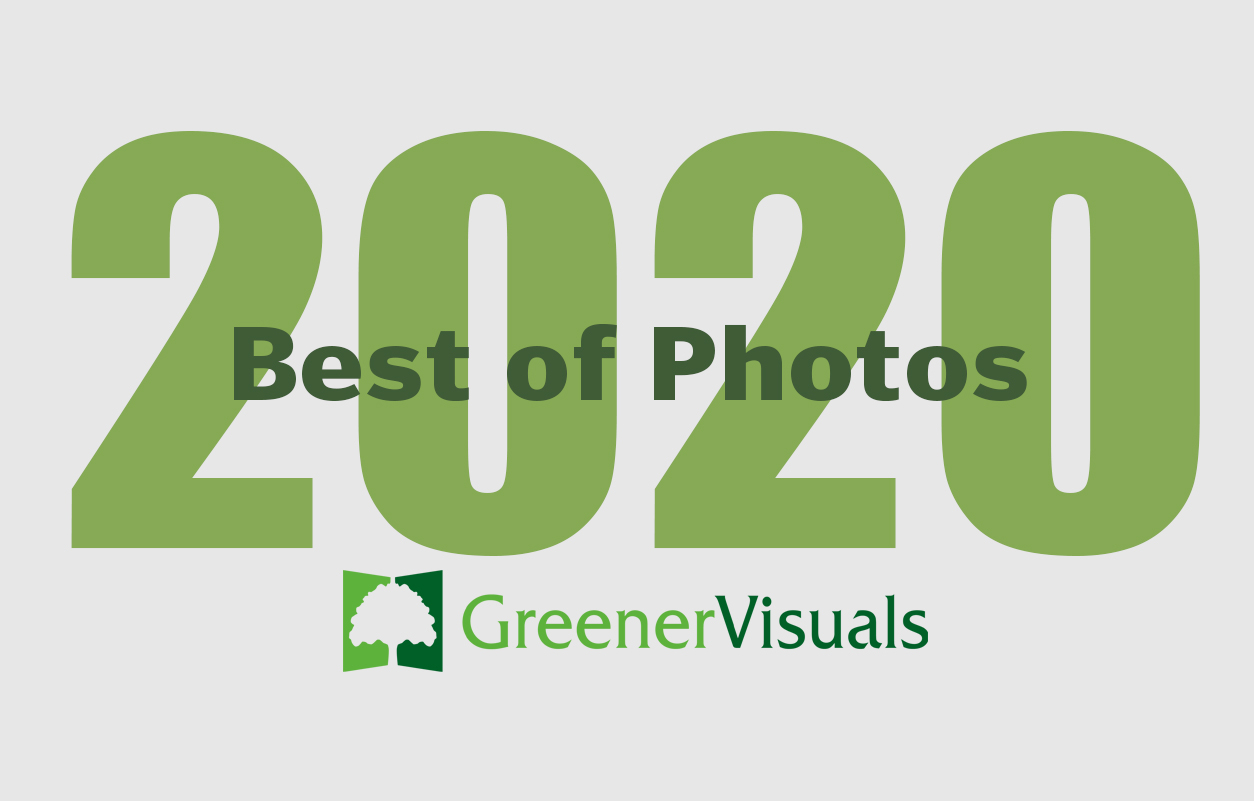 Greener-Visuals-Photography-Best-of-2020-Slideshow