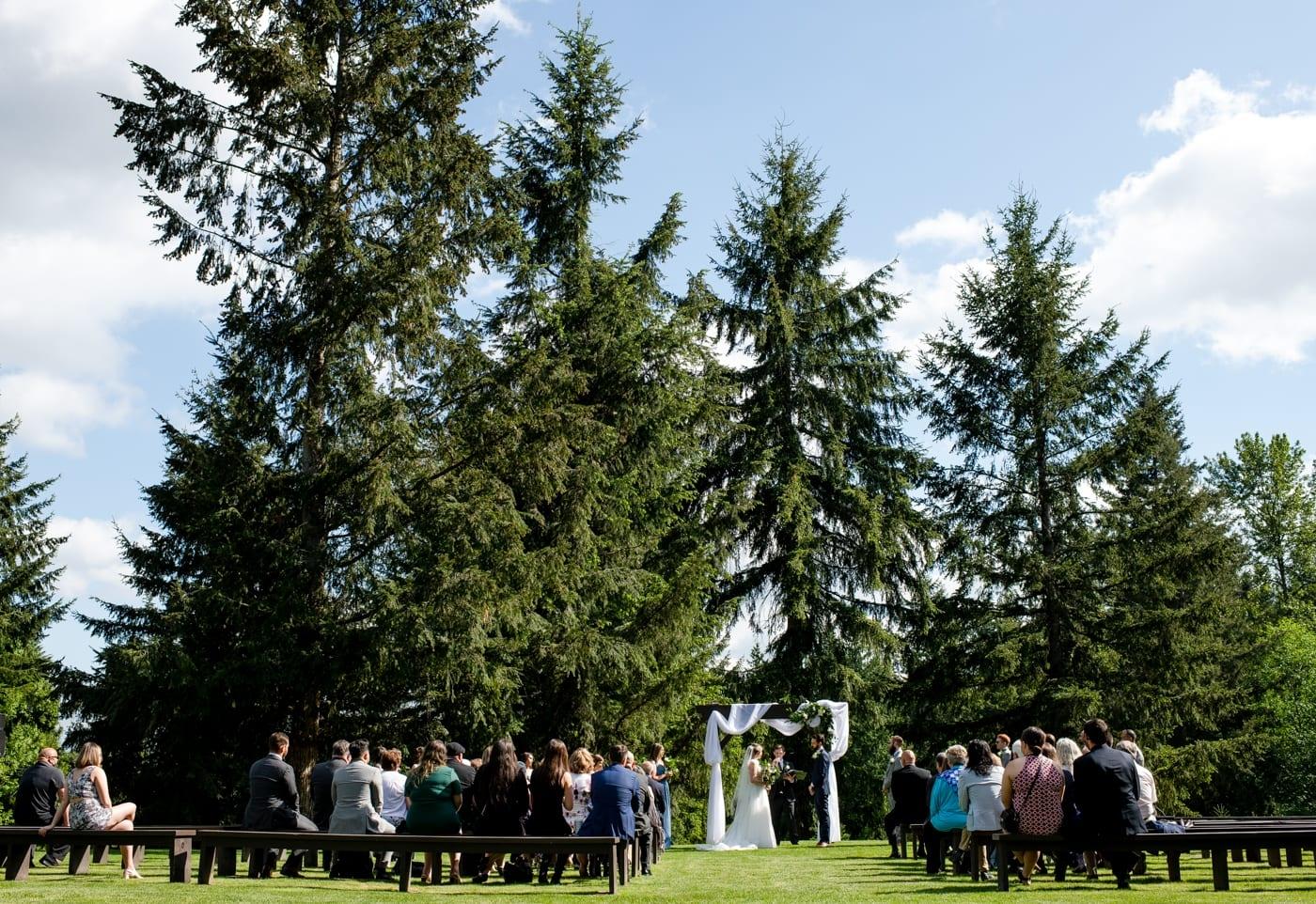 Wedding-Ceremony-Trinity-Tree-Farm-Wedding-Photos-Greener-Visuals