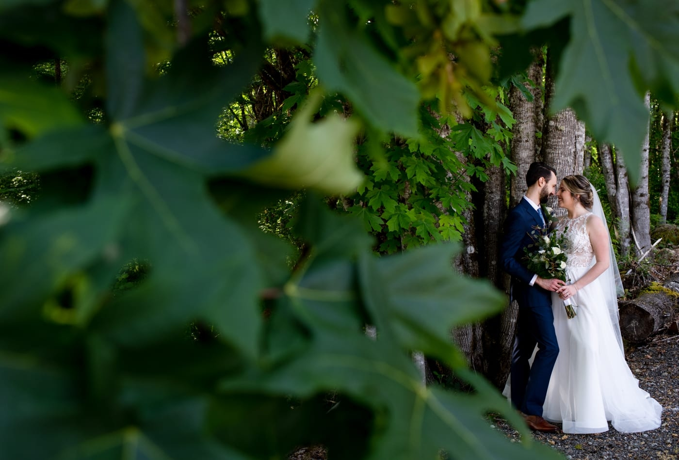 Couple-Amongst-Leaves-Trinity-Tree-Farm-Wedding-Photos-Greener-Visuals