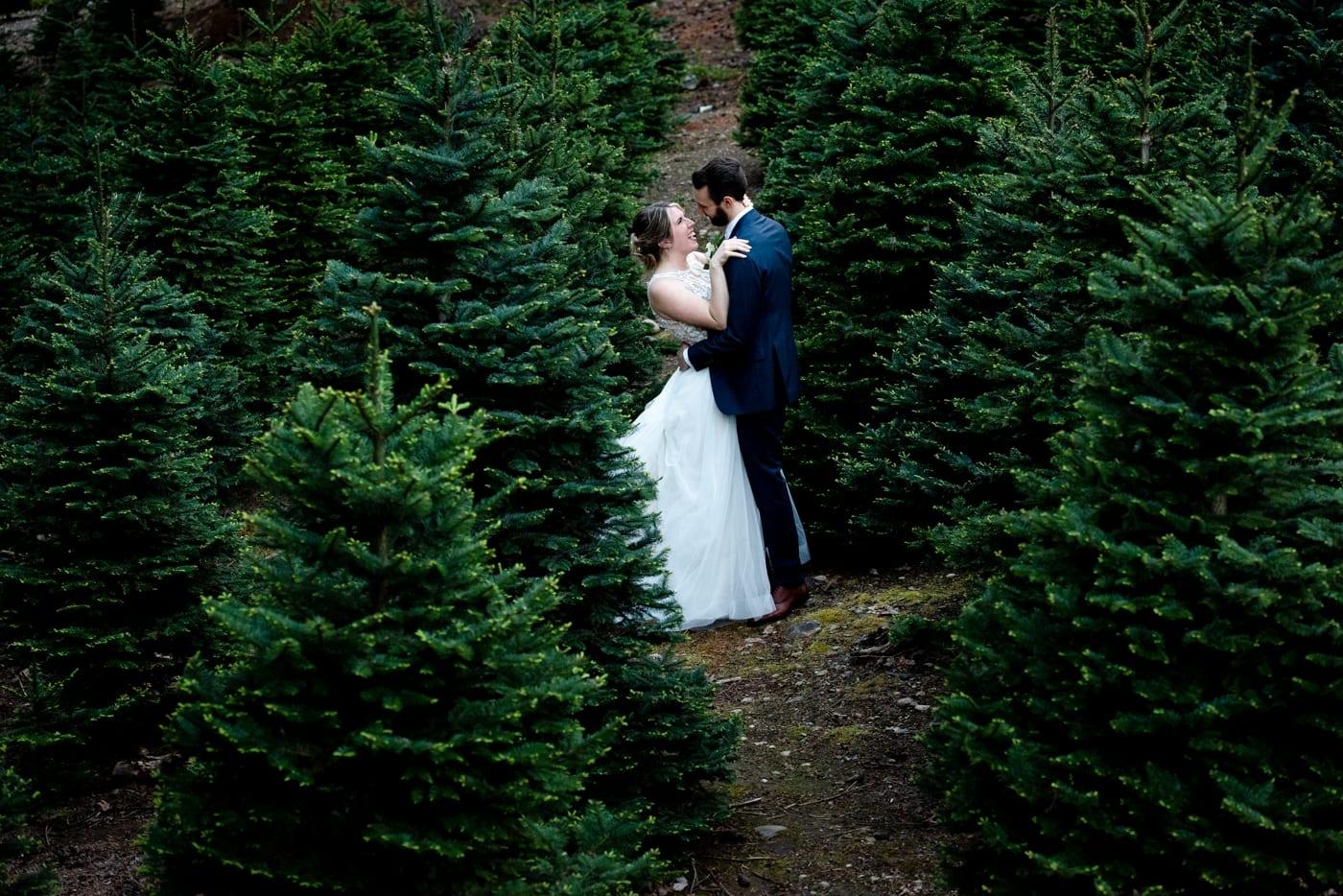 Couple-Amongst-Pines-Trinity-Tree-Farm-Wedding-Photos-Greener-Visuals