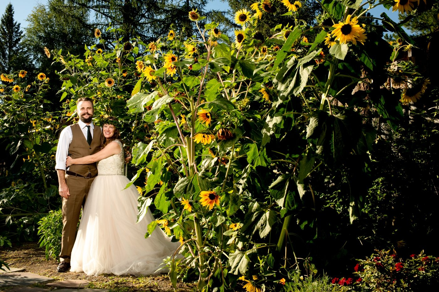 The-Nest-on-Swan-River-Wedding-Day-Photos-Couples-Sunflowers